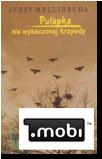Pułapka niewybaczonej krzywdy (e-book)